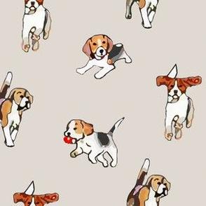 Beagles at Play