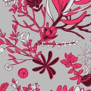 Fuschia Cradle Flora