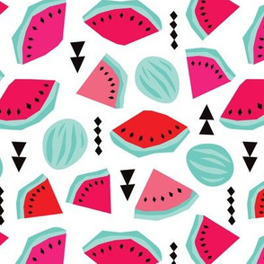 Colorful hot summer water melon tropical fruit geometric abstract illustration print