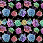 Geometric Galaxy Roses Black Background