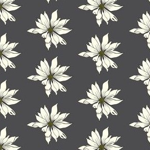 White Daisy Drawing on dark grey
