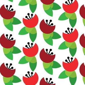 Crescent Poppy