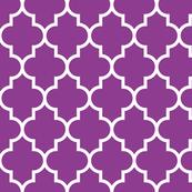 quatrefoil LG grape