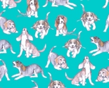 Rbeagle_pups_on_robin_s_egg_blue_thumb