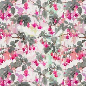 Rainbow Fuchsia Floral Pattern with Grey
