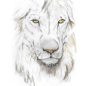 Lion Portrait, Tinted 1