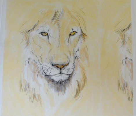 Lion Portrait, Tinted 2