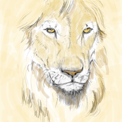 Lion Portrait, Tinted 3