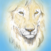 Lion Portrait, Tinted 4