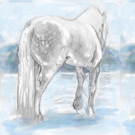 Gypsy Horse, Tinted