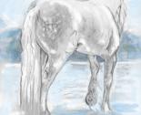 Rgypsy_horse__tinted_thumb