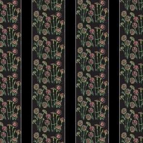 Black Carnation