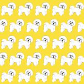 Bichon Frise Sunshine Yellow