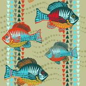 sunfish-graffiti-daytime