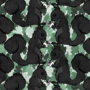 Black Squirrels and Oak Leaves
