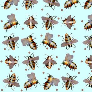 biggiebees