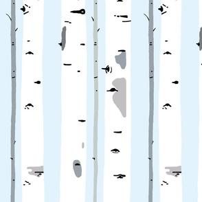 Cool Aspen Trees