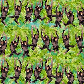 cheeky monkey line
