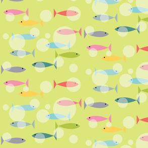 Island Fish