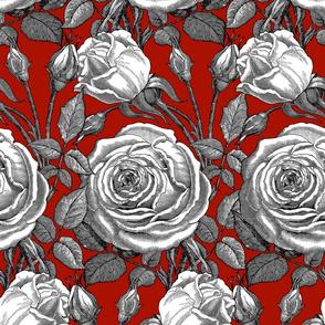 Perle des Jardins ~ Black and White ~Turkey Red
