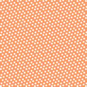 Snowy Small Orange