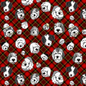 OES Faces Red Plaid