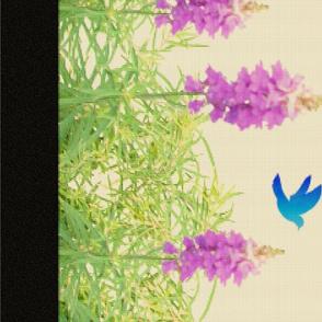 Lavender Rainbow2 (yard)