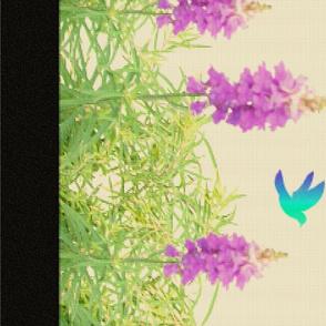 Lavender Blue2 (yard)