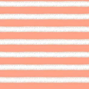 Peach and White Adventure Stripe