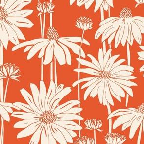 Sunshine Daisy - Tangerine Cream