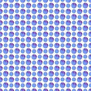 Viola petal spots & dots