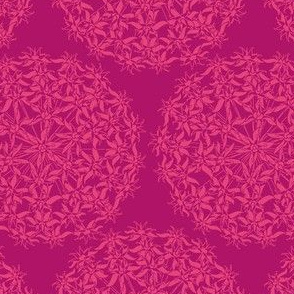 Allium Hex Pink on Pink