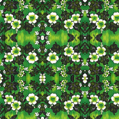Hawaii Green Hibiscus print