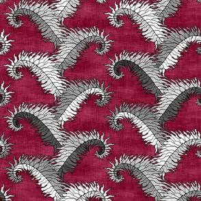 Silver Fern Stripe Ruby