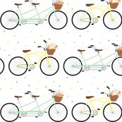 Bikes & Blooms
