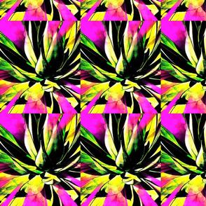 Desert Lily III