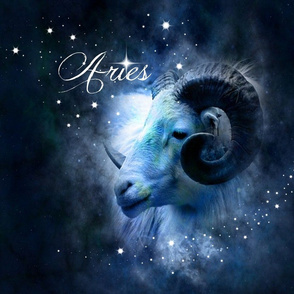 ARIES NIGHT