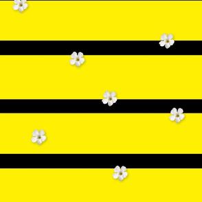 Honey Stripes