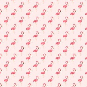 Preppy Flamingo Coral