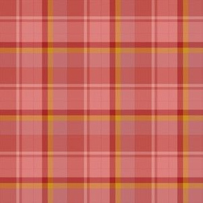 Warm Tones Apricot Plaid