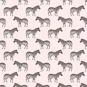 Preppy Zebra Coral