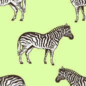 Preppy Zebra Pistachio