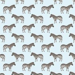 Preppy Zebra Sky