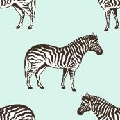 Preppy Zebra Spa