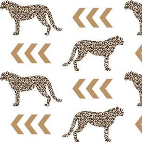 cheetah - tan and black leopard animal spots
