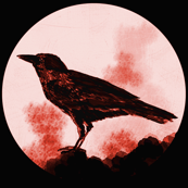 Crows (with color)