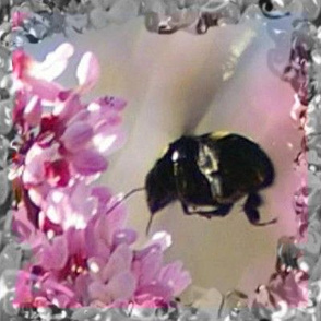 Rbee_in_lilac_square_4in_300dpi_centered_shop_thumb