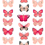 Butterflies - Pinks and Whites by Andrea Lauren