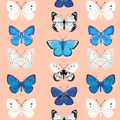 Butterflies - Pinks, Blues, and Whites by Andrea Lauren