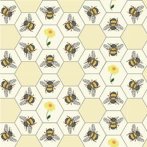 dance_of_the_bees
